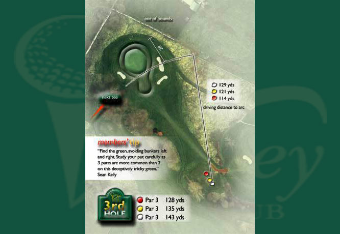 Colne Valley Golf Club, Earls Colne - 3rd Hole